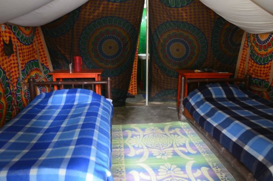 Nameri Eco Camp: Inside the tent