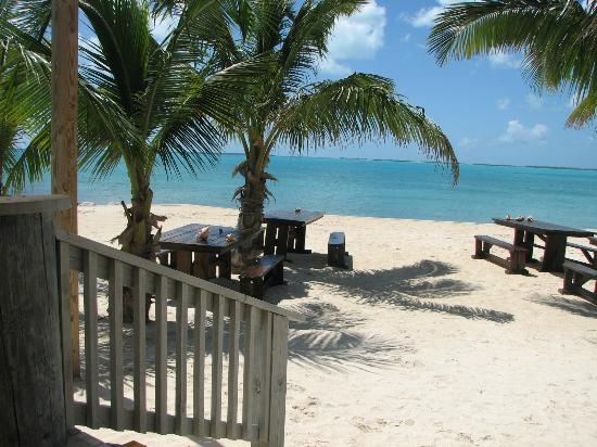 Pascal's at Cape Eleuthera: beach in front of the outdoor patio