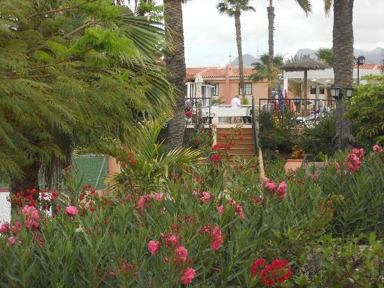 Room view picture of jardin del sol apartments playa for Jardin del sol gran canaria