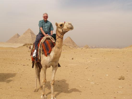 Ramasside Tours - Day Tours: Camel Ride near the pyramids