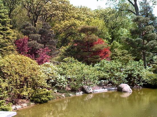 Gardens Picture Of Anderson Japanese Gardens Rockford
