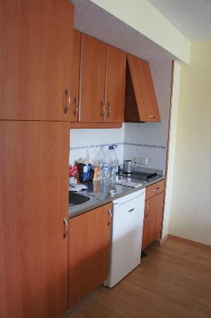 Aparthotel Esperanza Park: Kitchenette