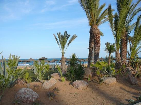 Zephir Hotel & Spa: Jardin