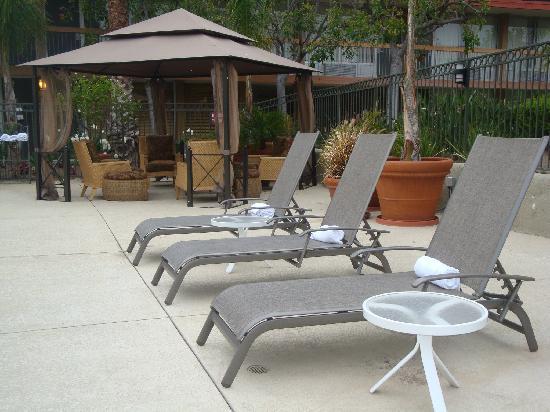 Palm Garden Hotel: Poolside!