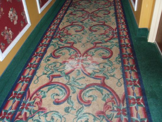 I-Drive Grand Resort & Suites: Lobby carpet