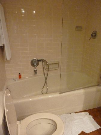 Dan Carmel Haifa: Bathroom
