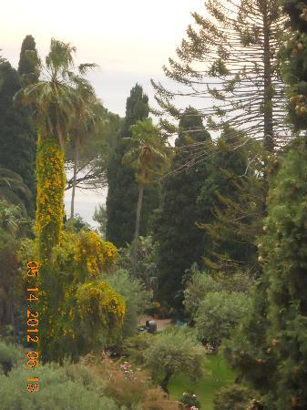Hotel Villa Paradiso: vista da camera (giardino)