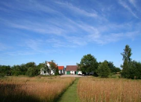 B&B Naturly: B&B surrounded by fields and forest