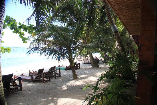 Oasis Resort: выход на пляж