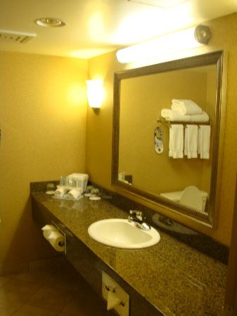 Holiday Inn Express Hotel Vancouver Metrotown: Bathroom