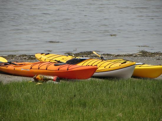 World's End : Kayaks