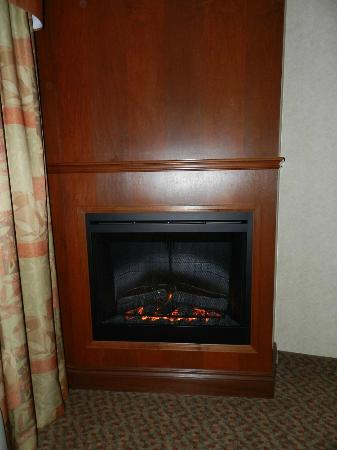 Holiday Inn Express Hotel & Suites Brampton: fireplace