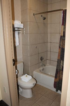 Grand Lodge Waterpark Resort: bathroom in standard room