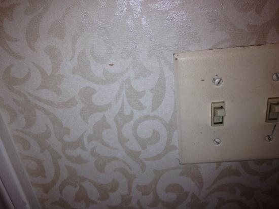 Westford Regency Inn : light switches