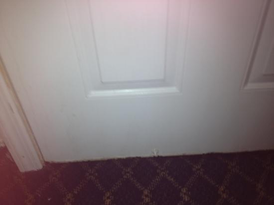 Westford Regency Inn : bottom of door all rusty inside room