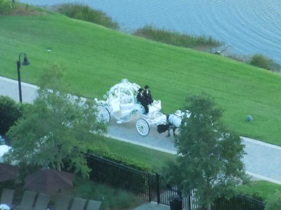 Hilton Orlando Bonnet Creek: princess wedding carriage