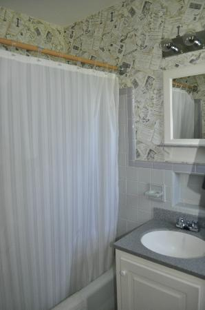 Luray Caverns Motel West : Clean, updated bathroom.  Corian Counters and shelf.