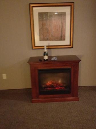 Hilton Garden Inn Indianapolis South/Greenwood: fireplace