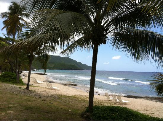 Renaissance St. Croix Carambola Beach Resort & Spa: Beach View Looking West