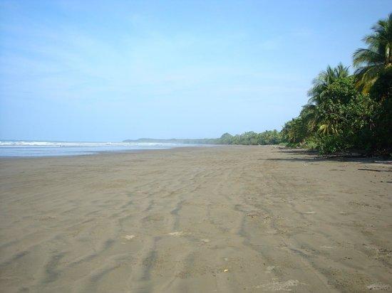 Villa Pacific Dream: Strand (5 Minuten zu Fuß vom Hotel entfernt)