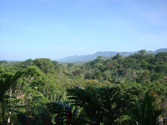 Villa Pacific Dream: Blick von Terrasse I