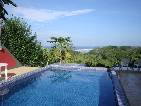 Villa Pacific Dream : Pool