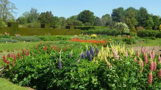 Waterperry Gardens: waterperry border area