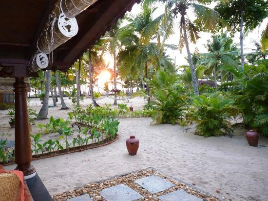 A Beach Symphony: View of the Garden infront of Nagaswaram cottage