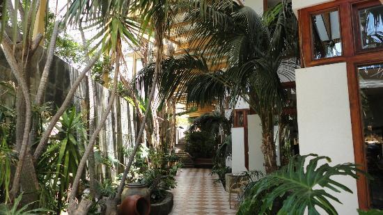 Corallium Beach By Lopesan Hotels : Espace entre la piscine et la réception