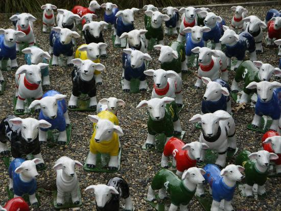 Brick Bay Sculpture Trail: World Cup Sheep