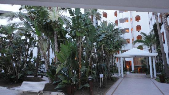 Corallium Beach By Lopesan Hotels : Entrée principale
