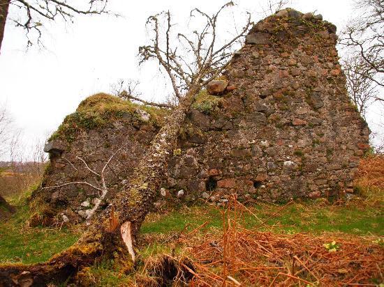 Torcastle House B&B: Tor Castle Ruins