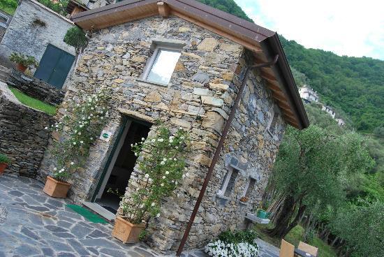 Villa Paggi Country House : L'ufficio di Alessandra e Gianluca