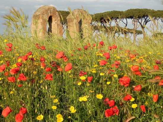 Rent a Local Friend - Tours: Springtime in Rome