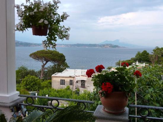 B&B Dea Fortuna: View on the Vesuvius
