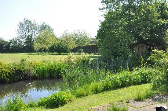 Hill Farm House : lilies