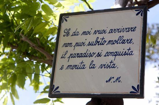 Agriturismo Villa Maria: All'inizio delle scale