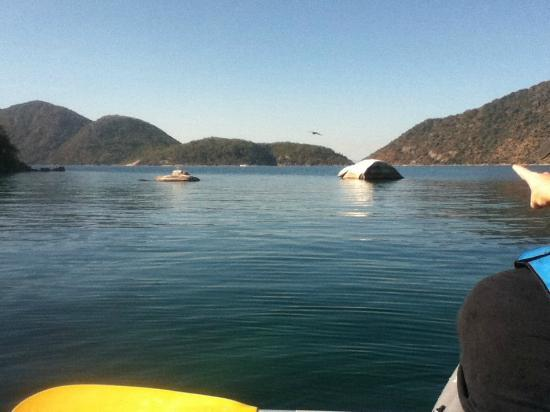 Danforth Yachting: Kayaking to our snorkeling spot - crystal clear waters and lots of fish.