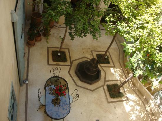 Riad Misria: Patio intérieur et ses orangers