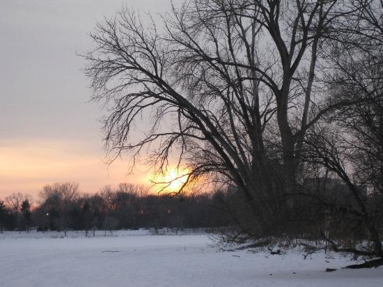 Lake of the Isles : Winter sunset
