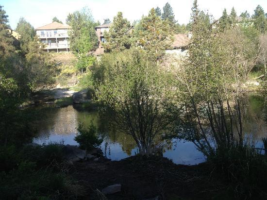 Shilo Inn Suites Hotel - Bend: Taken from our patio