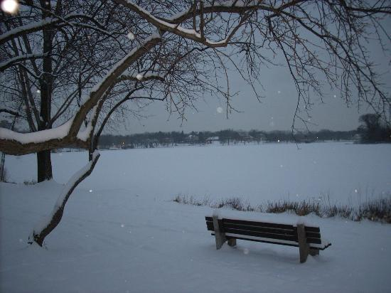 Lake of the Isles : A quiet dusk on the lake, with snow falling.