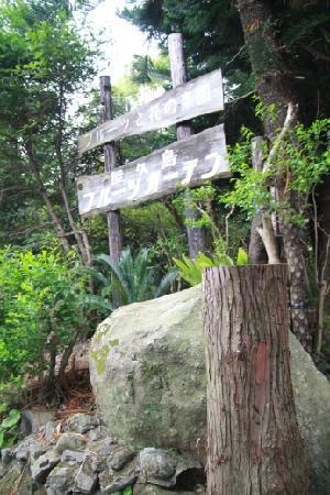 Yakushima Fruit Garden