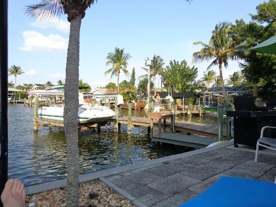 Dolphin Inn: Bay and dock views