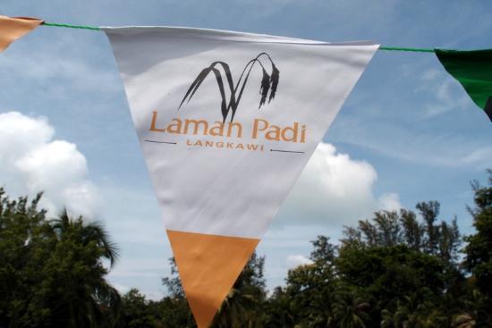 Laman Padi Langkawi: Laman Padi
