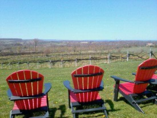 Coffin Ridge Boutique Winery: Life's simple pleasures