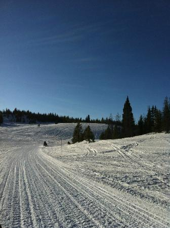 On our snowmobile tour
