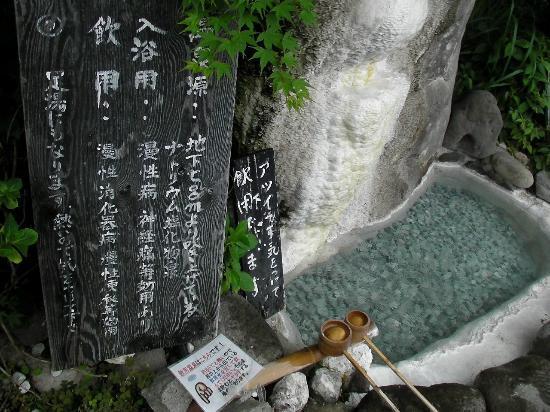 Shoya no Yakata: 飲泉所