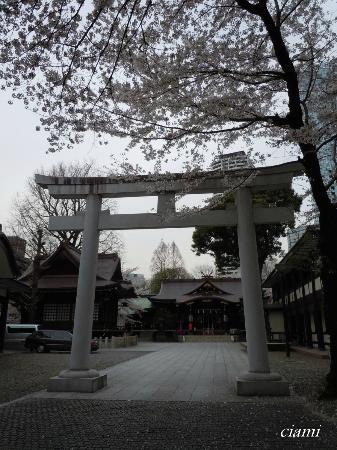 Kumano Shrine : 熊野神社
