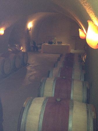 Vine Cliff Winery: Heading back through the cave past oak barrels of wine to the magical dinner location.
